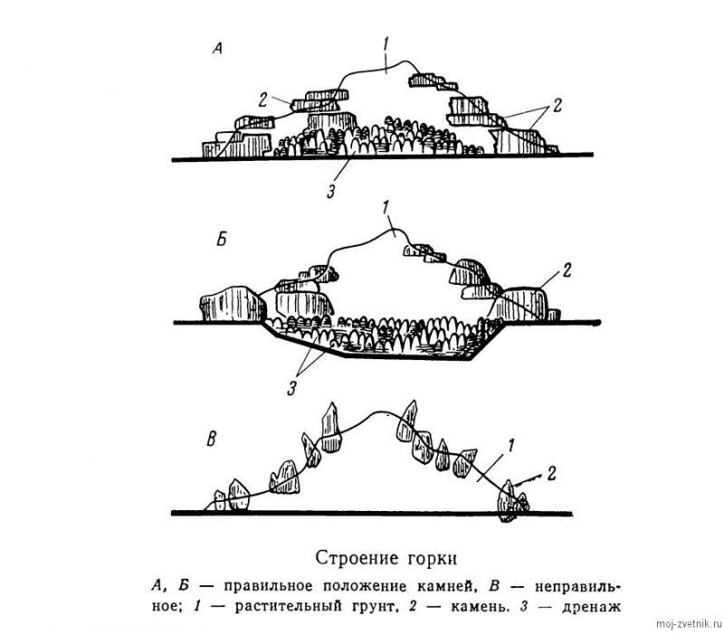 строение альпийской горки