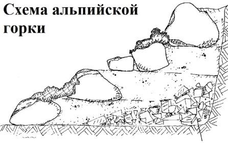 схема расположения камней и растений в альпийской горке