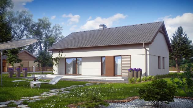 проект одноэтажного частного дома с двускатной крышей