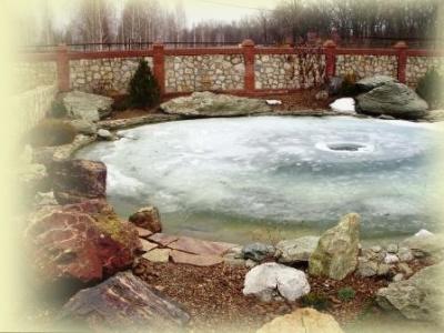 пруд на даче зимой