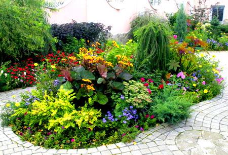 закрытый садовый цветник