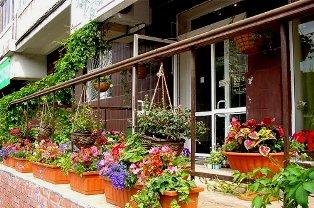 украшение дома снаружи цветами