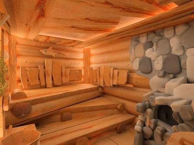 Из чего лучше строить баню – какой материал и дерево выбрать для этого