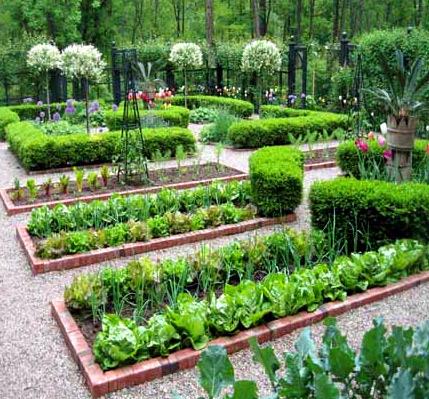 огород ландшафтный дизайн