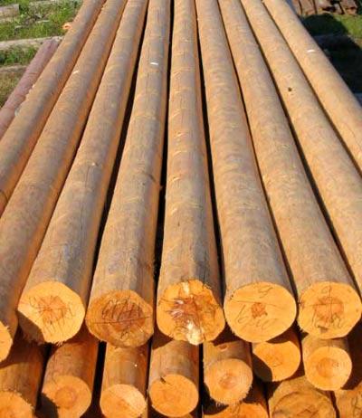 древесина для постройки