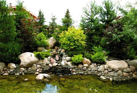 пруд ландшафтный дизайн