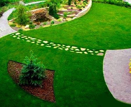 травяной партерный газон