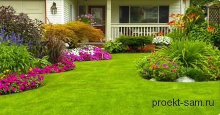 зеленая газонная лужайка перед входом в дом