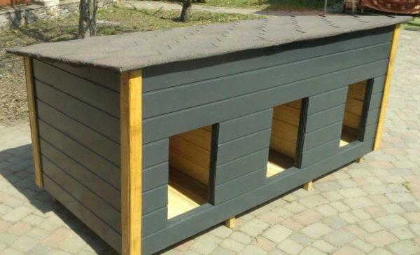 дом на 3 собаки