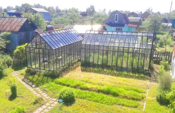 как расположить теплицу на огороде