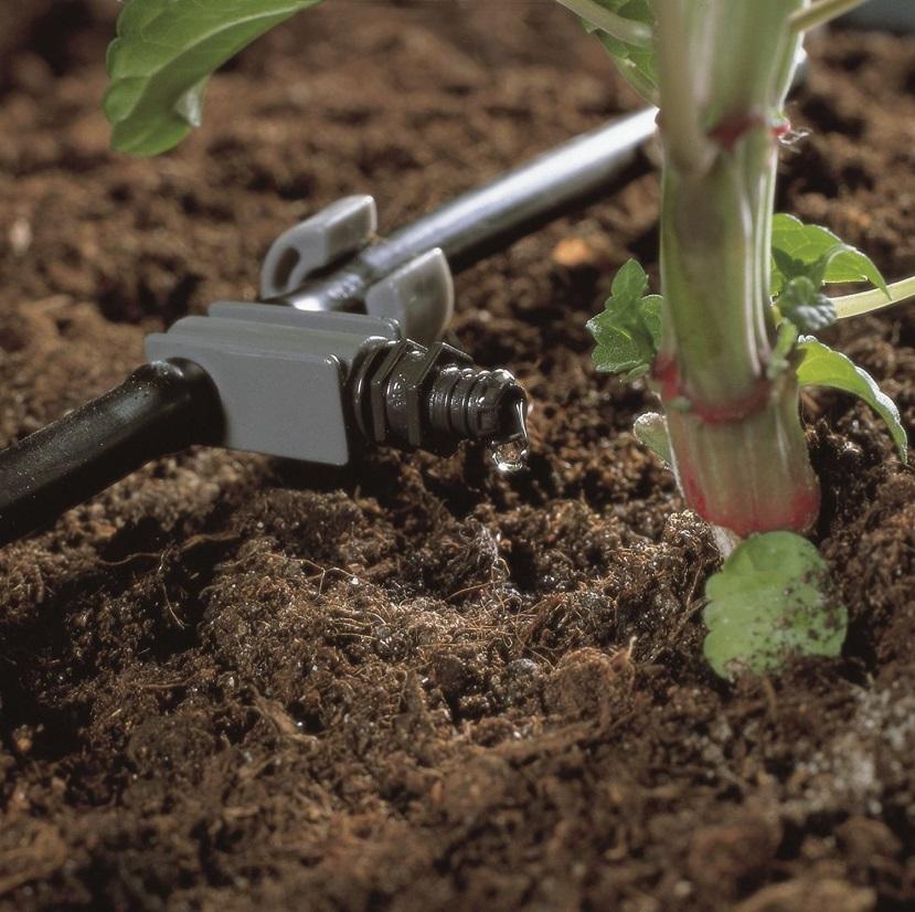 орошение растения