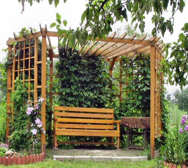 пергола с растениями