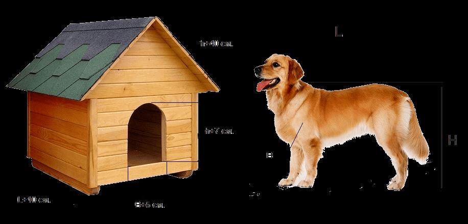 конура для собаки своими руками чертежи и размеры фото примеру, недавно, певица