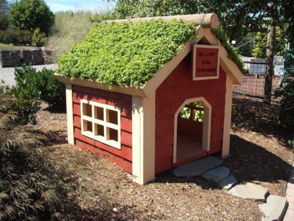 домик с живой крышей