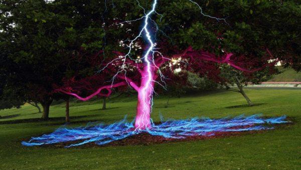 молния попала в дерево