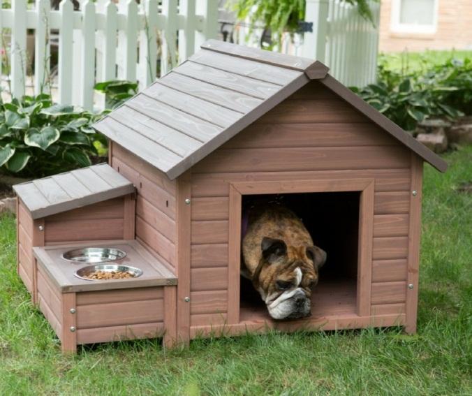 домик с миской