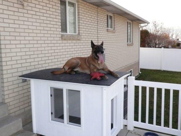 лежанка на крыше