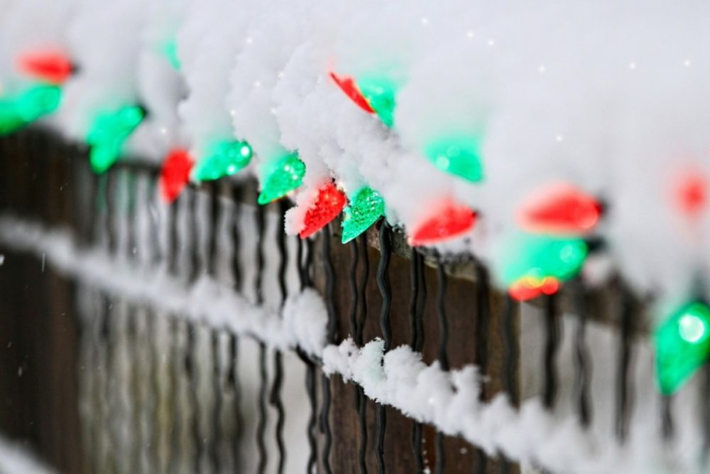 Лампочки на заборе