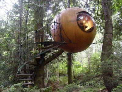 дом деревянный шар на дереве