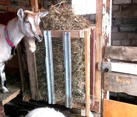 кирпичный сарай для коз