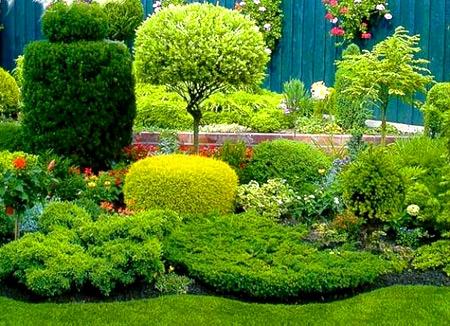 сад ландшафтный дизайн