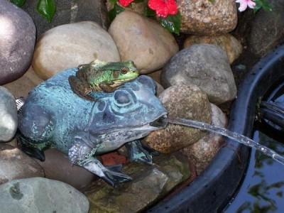 оригинальное оформление дачного фонтана