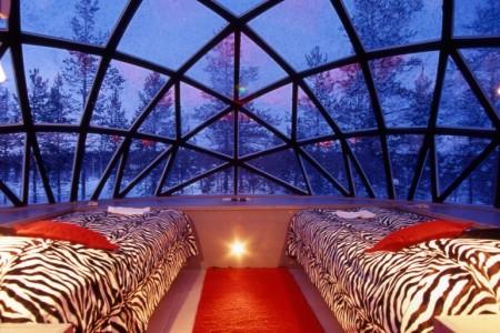 панорамная стеклянная крыша
