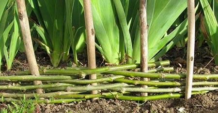 уплотнение изгороди