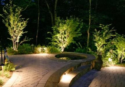 подсветка кустарников на участке