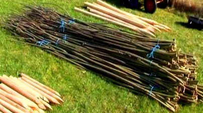 подготовка прутьев для плетенного забора