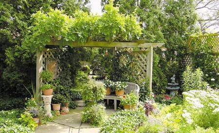 растения на крыше беседки
