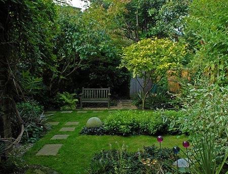 растения во внутреннем дворике