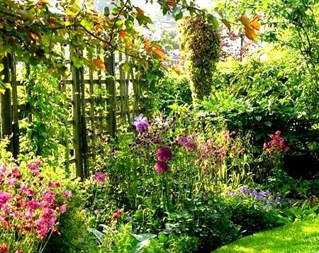 опора садовая лиана
