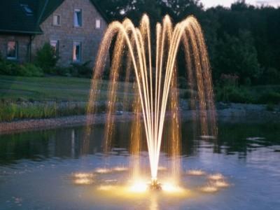струя фонтана рыбий хвост