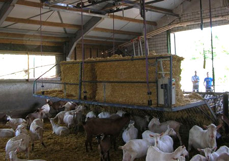 окна сарай для коз