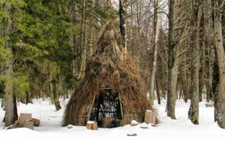шалаш в лесу