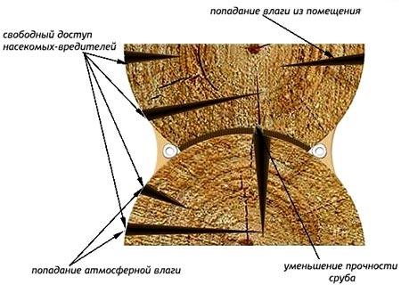 трещины в бревнах