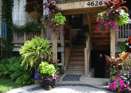 украшение дома цветами