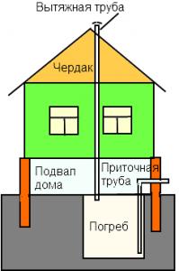 схема устройства погреба в доме