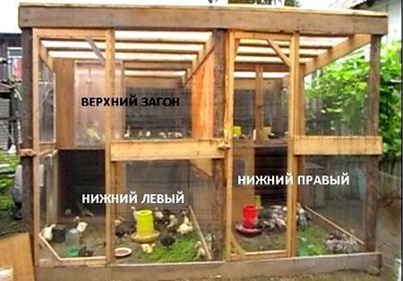 конструкция птичника