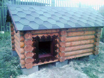 крыша будки для собаки