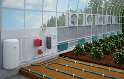 схема устройства водяного отопления теплицы