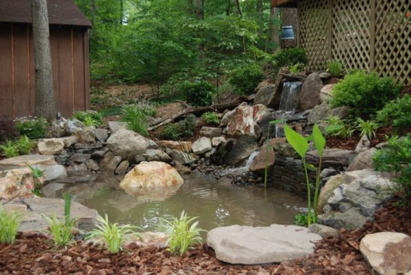 водоем с фонтаном