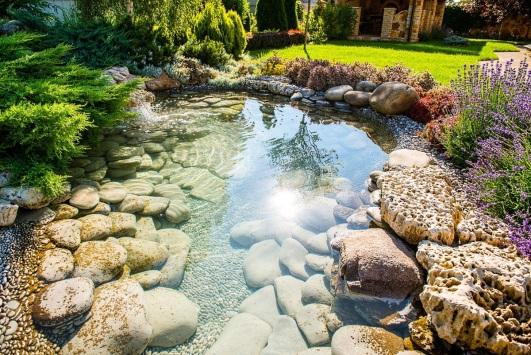 Камни для украшения пруда