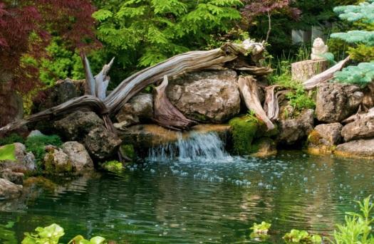 Украшение пруда корягами и бревнами