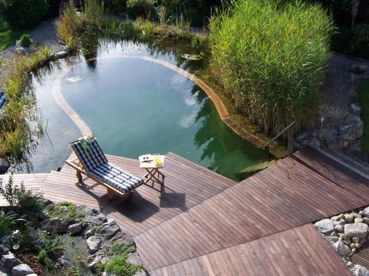 Дизайн дачного пруда