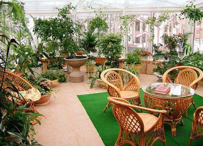 зимний сад для приема гостей