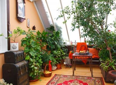 зимний сад на втором этаже