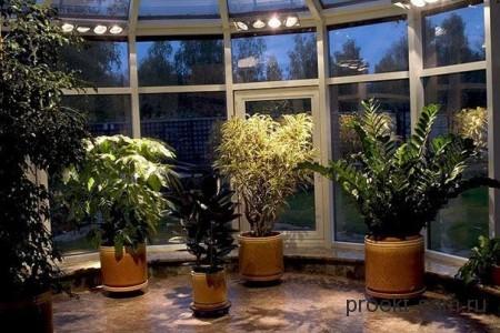 зимний сад с затемненным стеклом