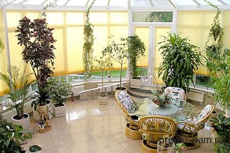 зимний сад с желтыми стеклами
